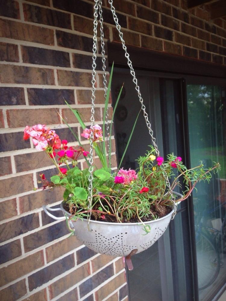 Colander Hanging Basket (1/3)